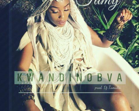 Tamy Moyo - Kwandinobva