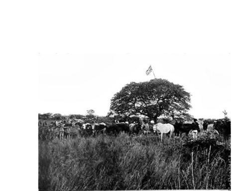 The Frist Brirish Flag At Bulawayo (ca. 1893)